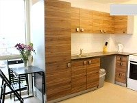Holiday Rental Apartment kitchenette