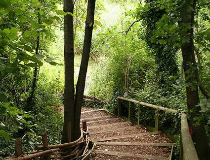 Camley_Street_Natural_Park.jpg