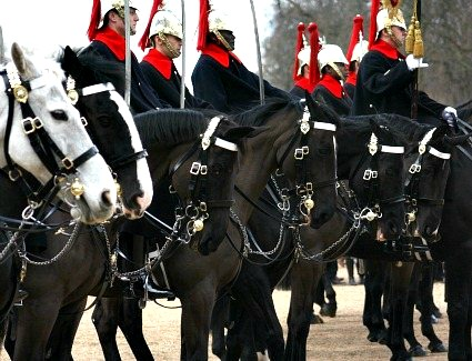 Book a hotel near Horse Guards