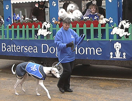 Book a hotel near Battersea Dogs Home