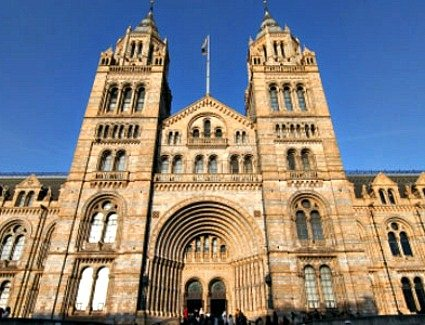 Book a hotel near Natural History Museum