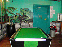 A Pool Table at Caledonian Backpackers