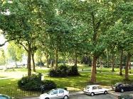 Paddington Green