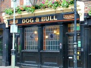 Dog & Bull