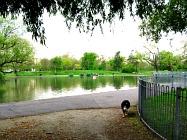Eagle Pond and Mount Pond